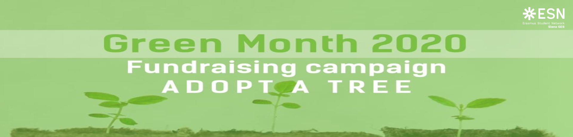 """Adopt a Tree"" Fundraising Campaign on Treedom"